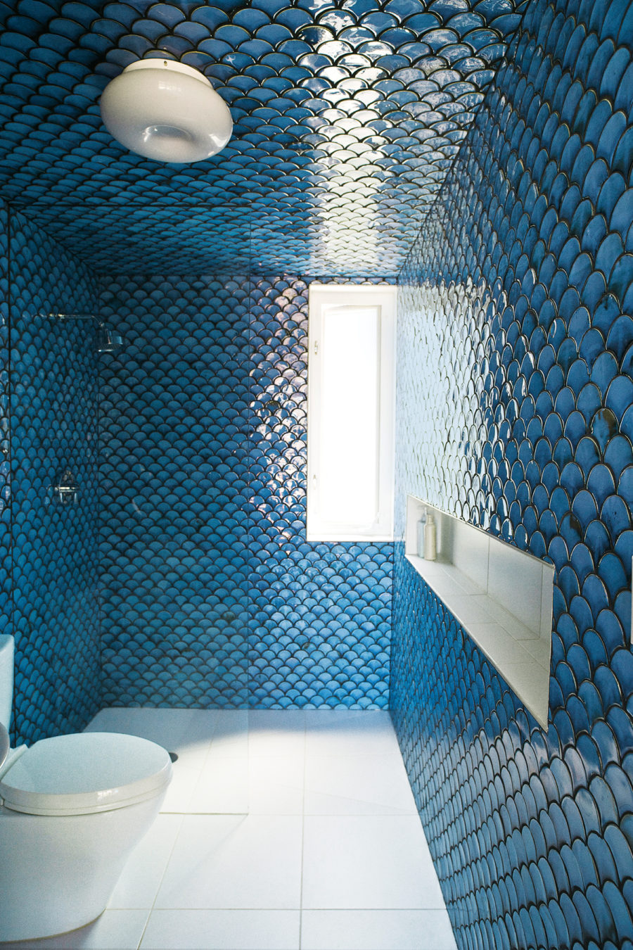 Fish scale shower