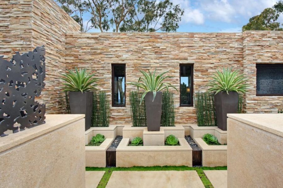 Modern waterless garden
