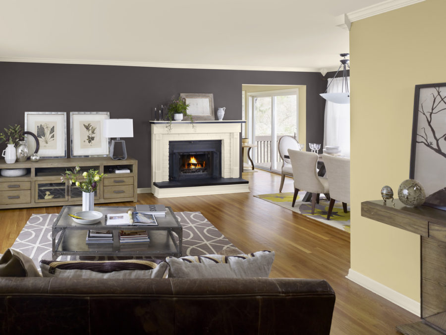 View In Gallery Great Accent Wall For Living Rooms Paint Color