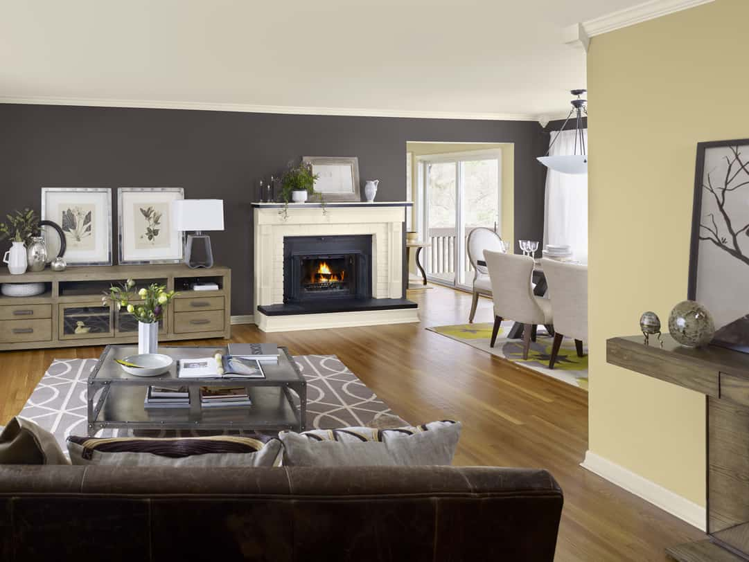 great-accent-wall-for-living-rooms-paint-color-colors-for-living-room-walls