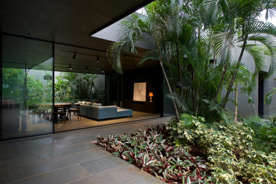 Amazing indoor-outdoor green courtyard