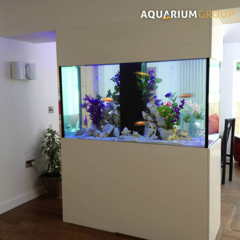 Aquarium Group room divider
