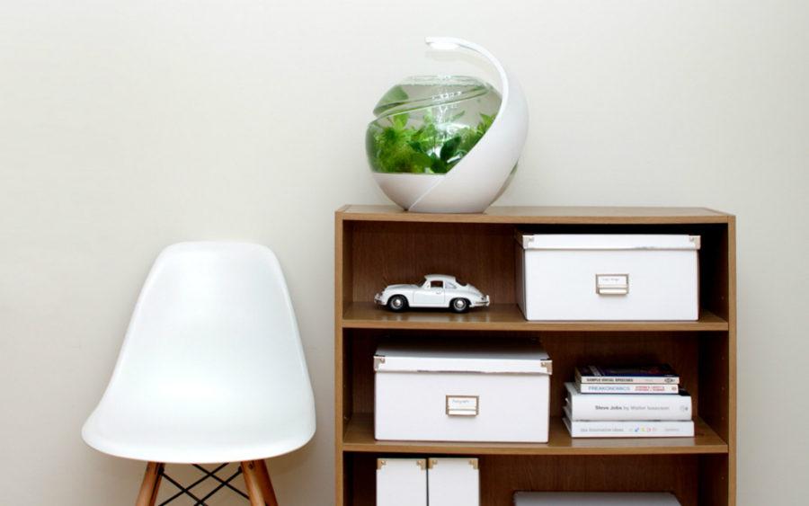 Avo self-cleaning tropical fish tank