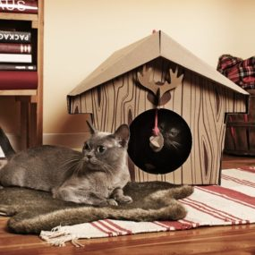 Canadian Cabin by Loyal Luxe 285x285 Designer Cat Beds for Most Capricious Felines