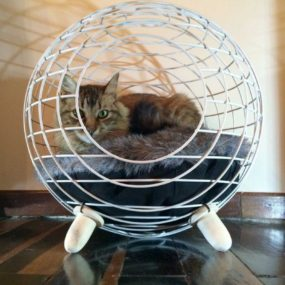 Cat Bed by Lord Paw 285x285 Designer Cat Beds for Most Capricious Felines