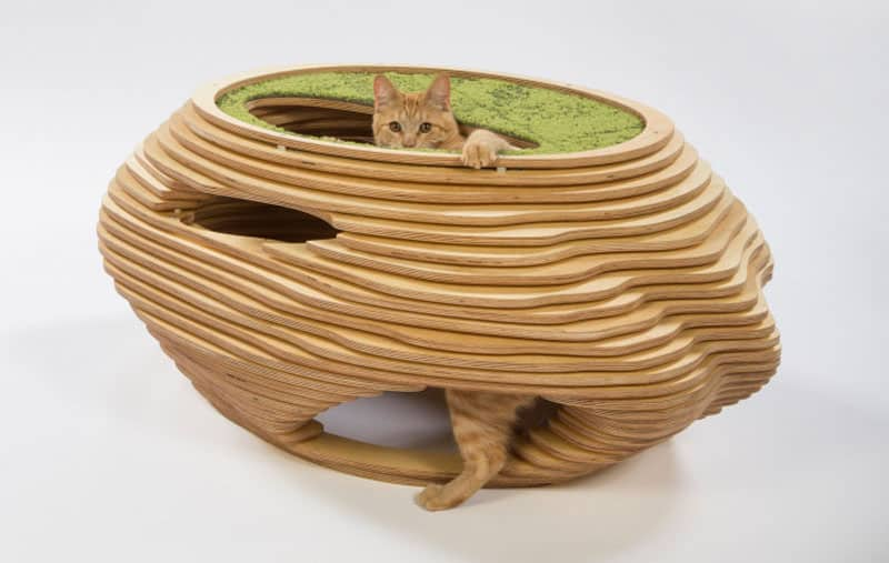 Cat Bowl shelter by Abramson Teiger Architects