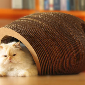 Cat cocoon by One Form Design 285x285 Designer Cat Beds for Most Capricious Felines