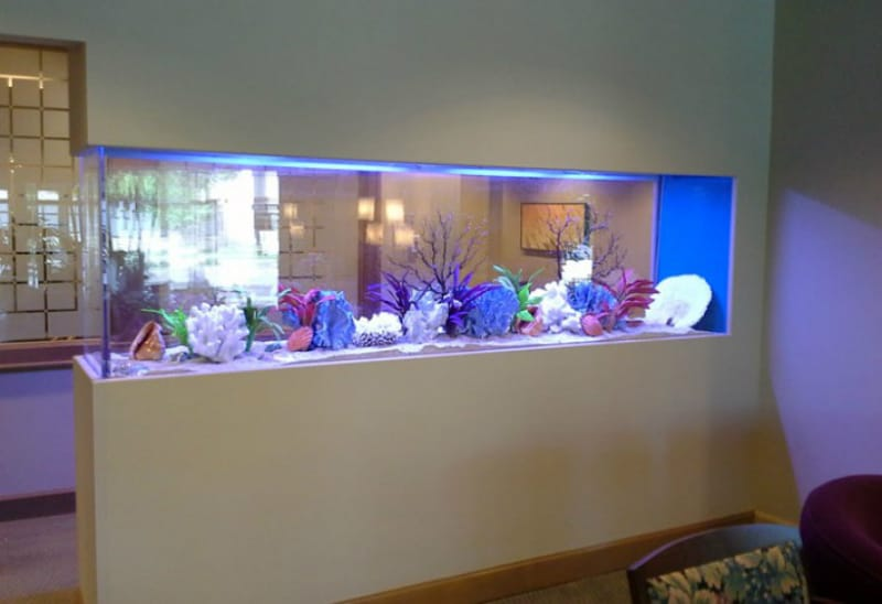 Clayton Aquariums Custom Built-in Wall Aquarium