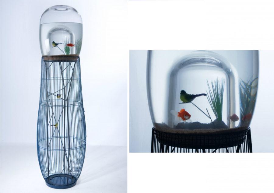 Duplex fish tank