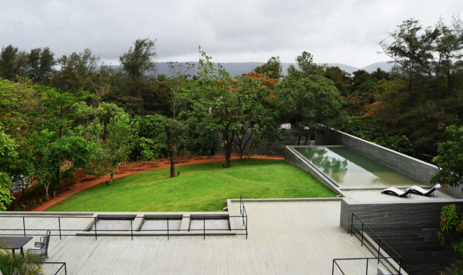 Fenced outdoor area feels both protected and wild