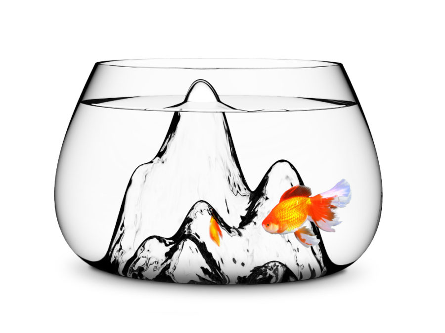 Fishscape Fishbowl by BY Aruliden