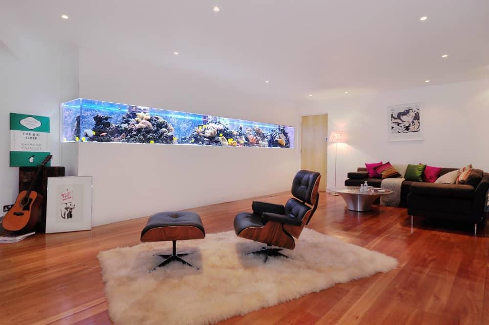 In-wall design aquarium
