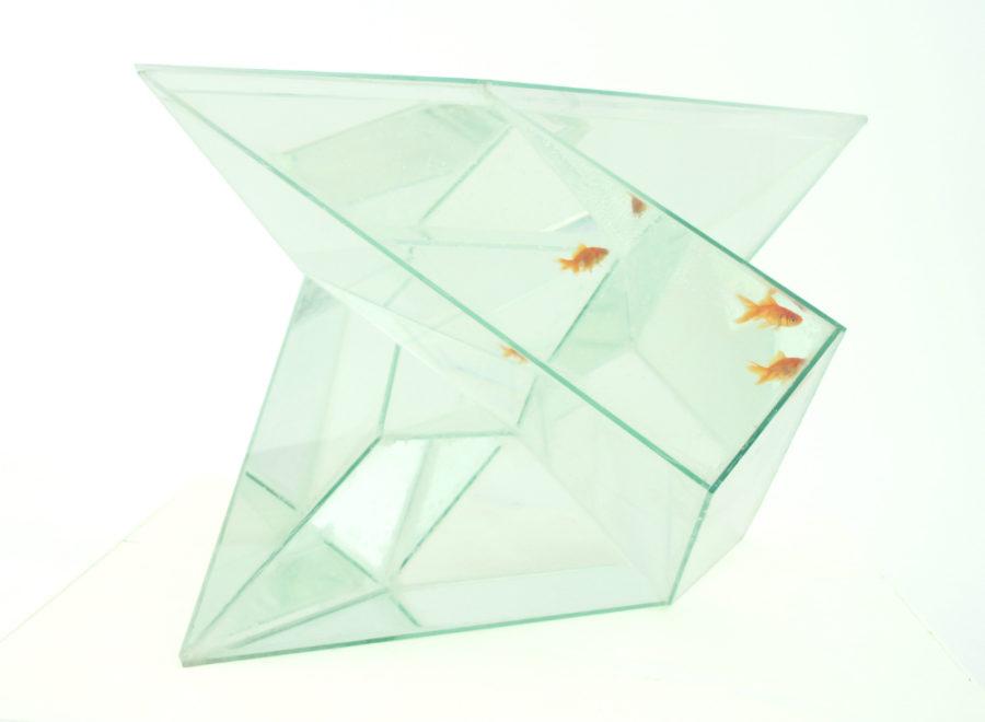 Infinity aquarium by bcxsy