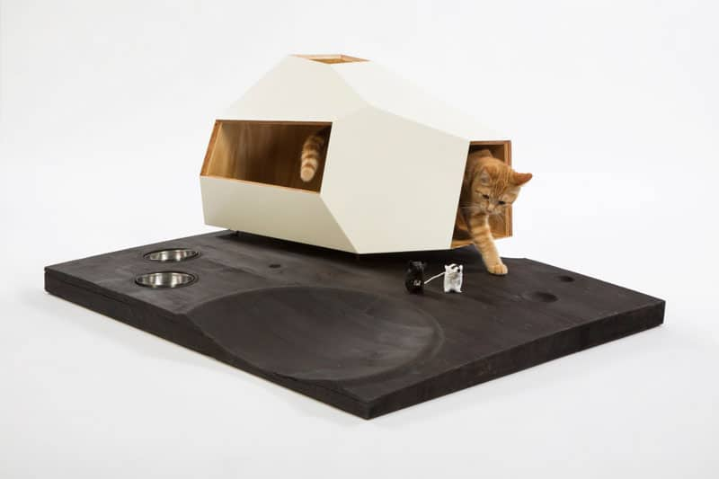 Lunar Cat Lander by Knowhow Shop.
