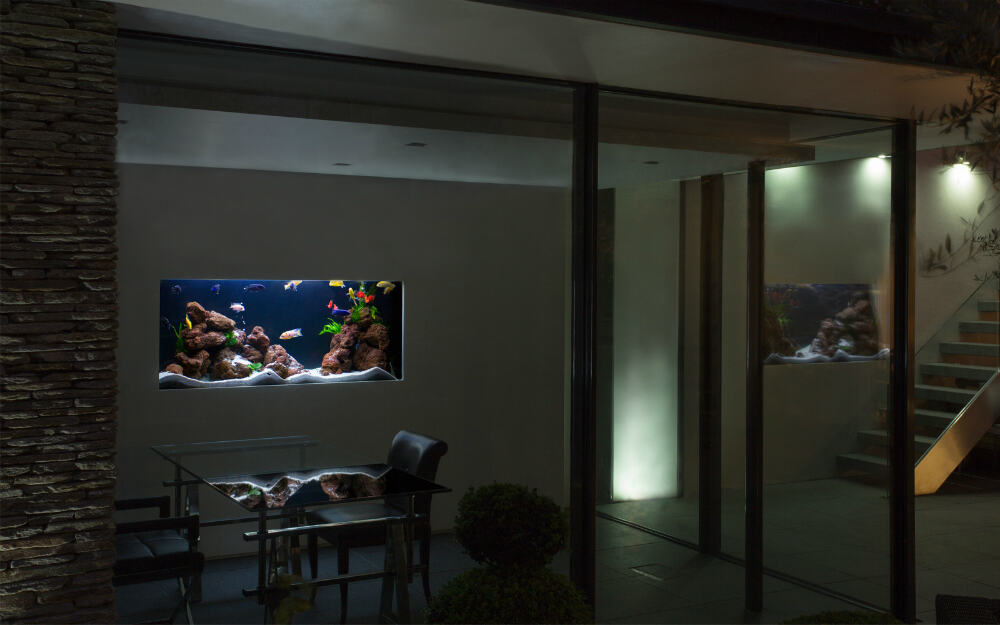 Nettleton Villa Freshwater Aquarium