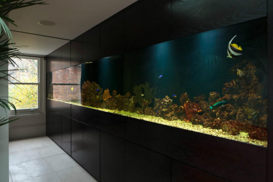 amazing built in aquariums in interior design. Black Bedroom Furniture Sets. Home Design Ideas