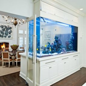 Amazing Built-In Aquariums in Interior Design