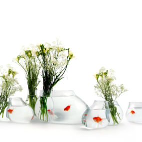 Salviati fish tank 285x285 20 Most Unusual Fish Tank Designs for Office and Home