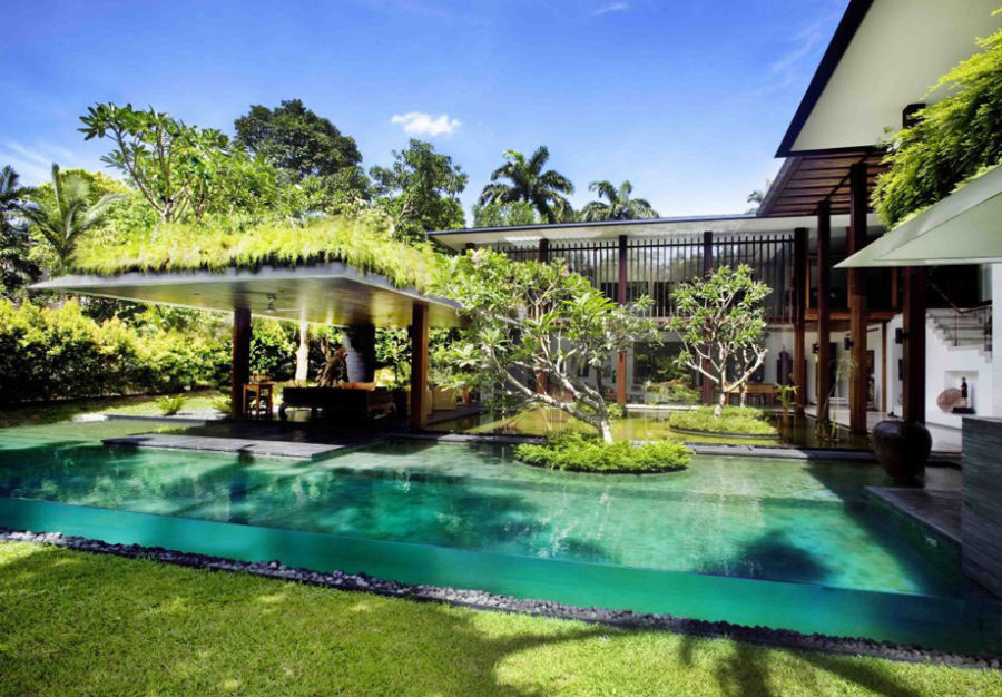 View In Gallery Transparent Pool By Guz Architects