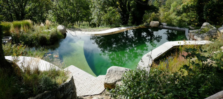 Pool designs of every type and for any location Natural swimming pool builders