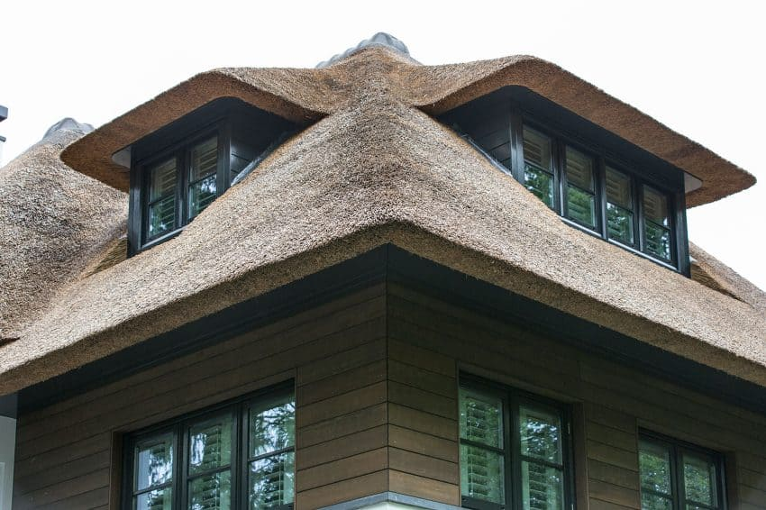A sculptural thatched roof envelops every window detail