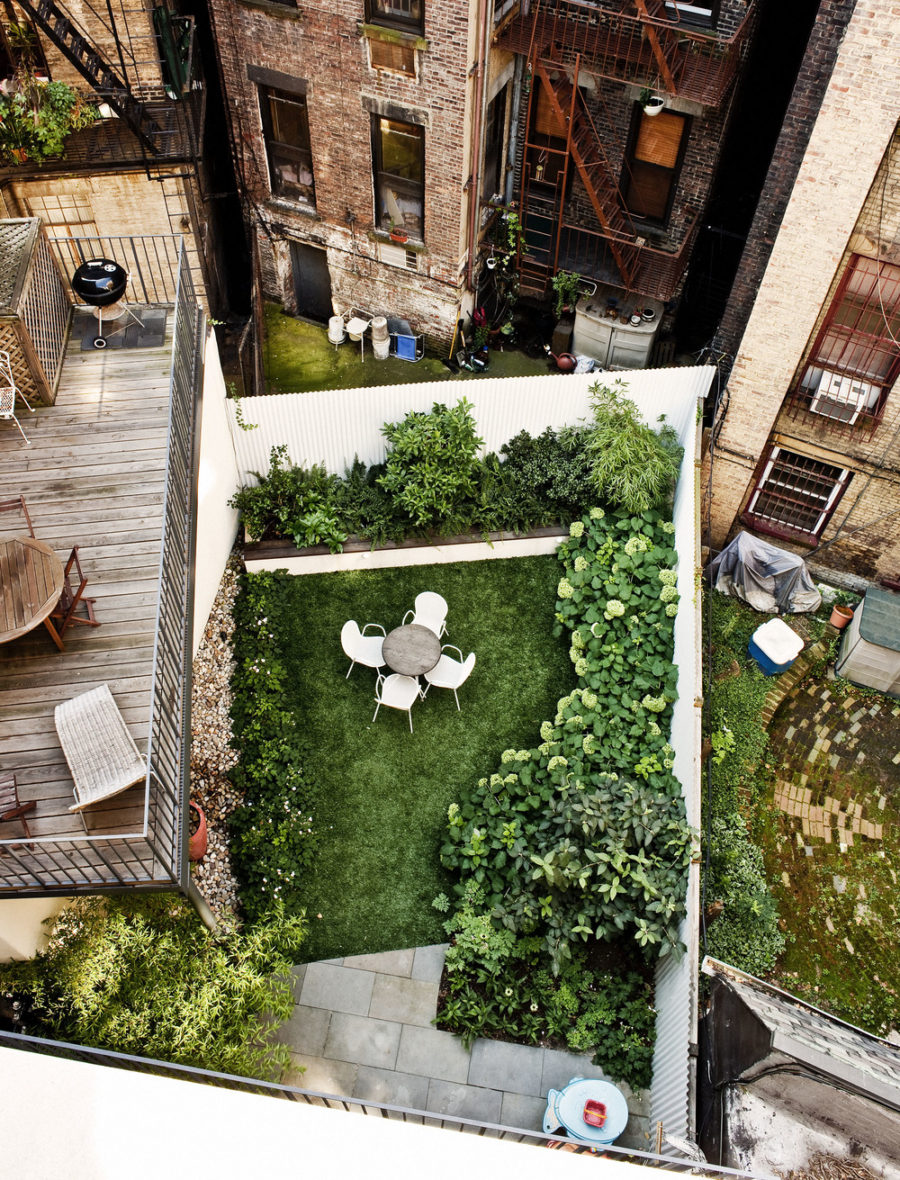 Foras Studio green backyard