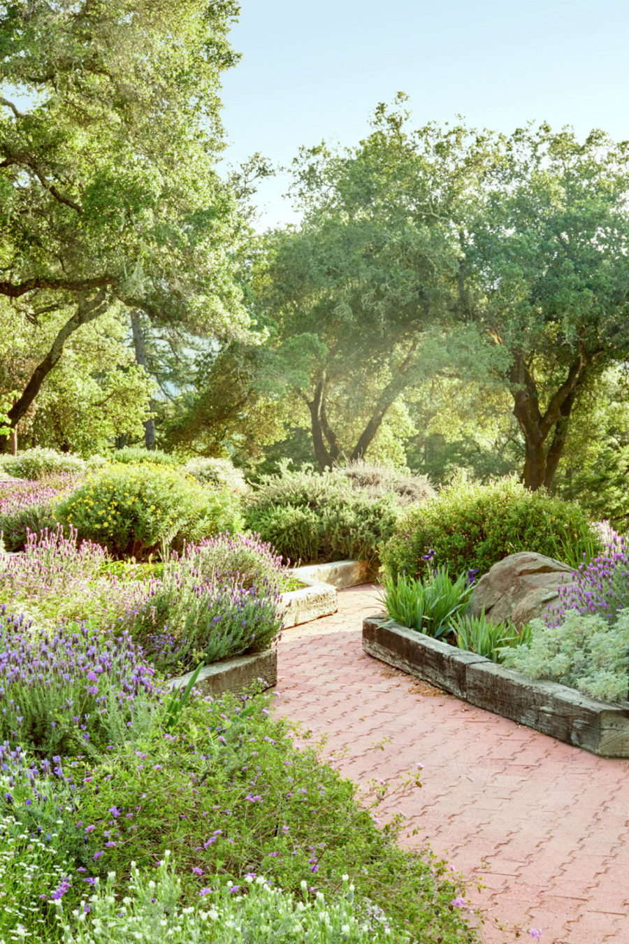 Easy and cool landscape ideas for Easy garden path ideas