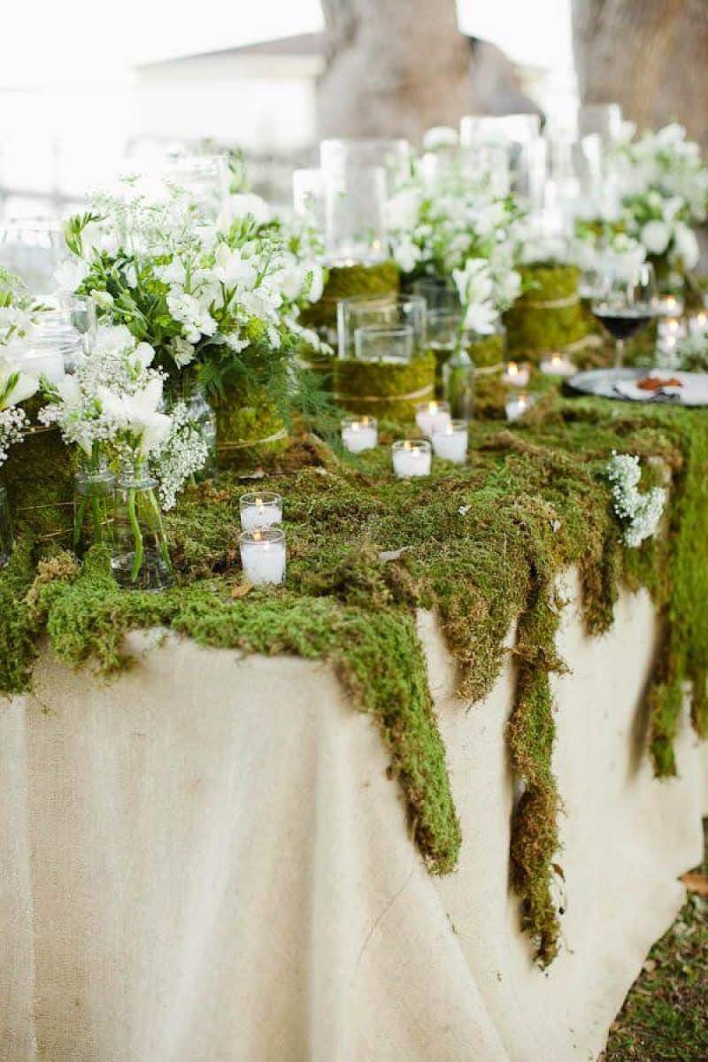 Moss-covered table