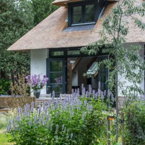 Tall blooming plants are perfect accents for extensive green lawns 285x285 Striking Villa Naarden Is a Modernized Dutch Thatched House