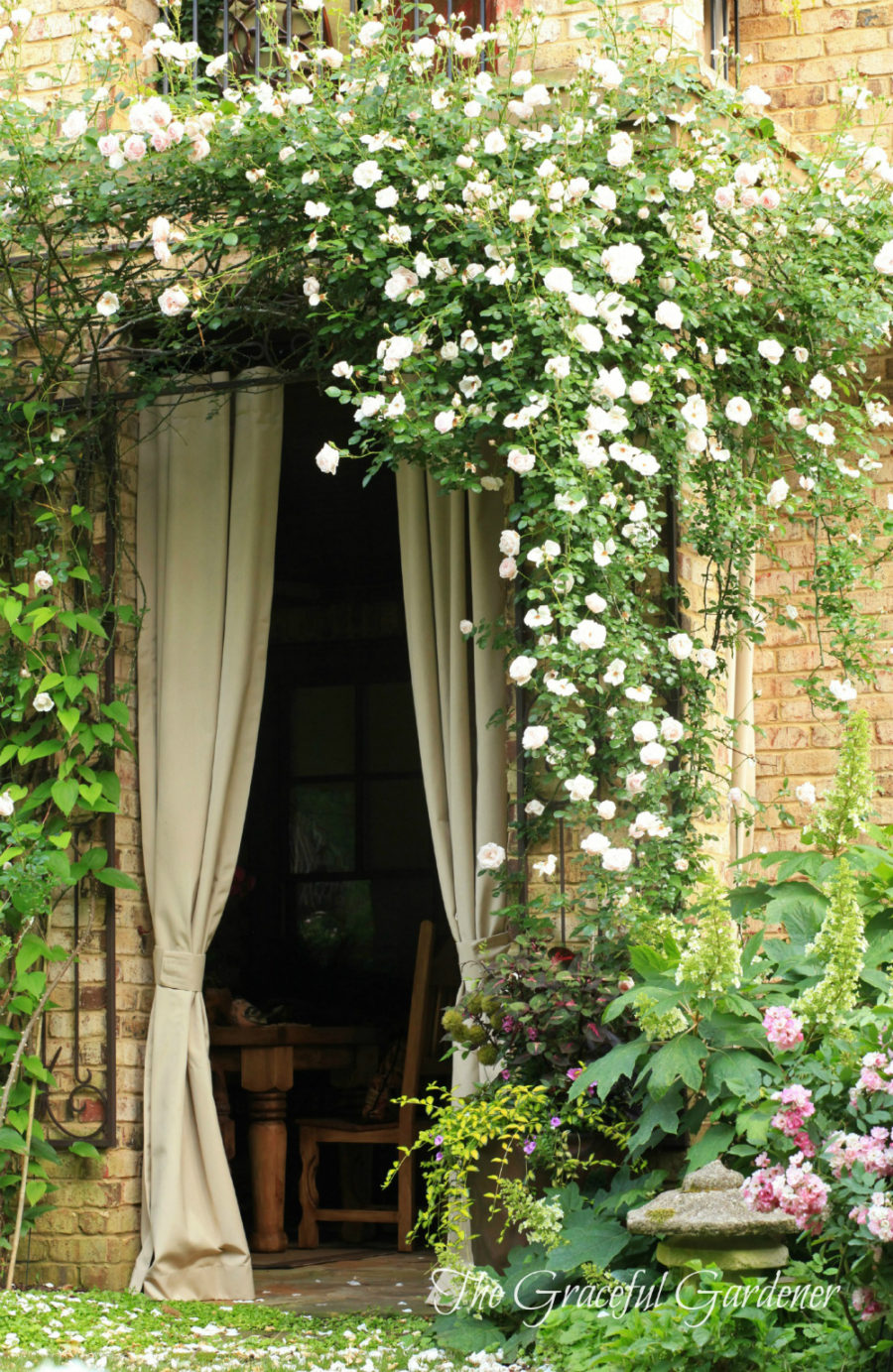 The Graceful Gardener rose arch