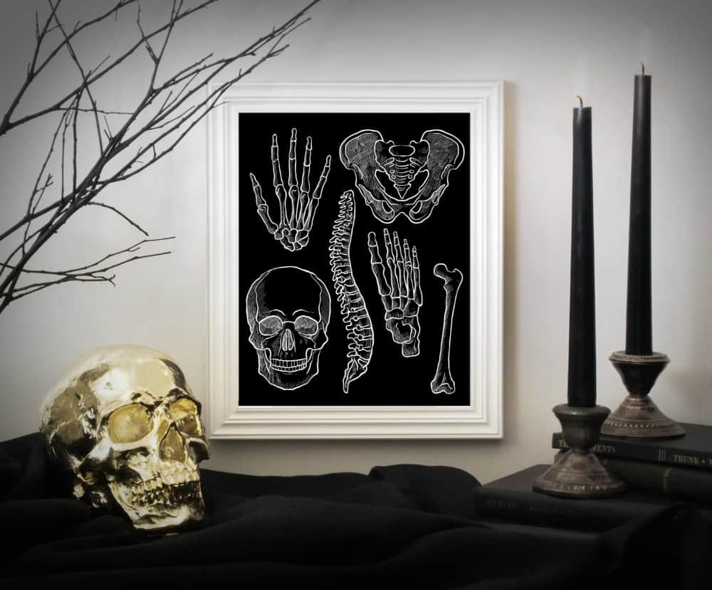 anatomy-instant-download-art-print
