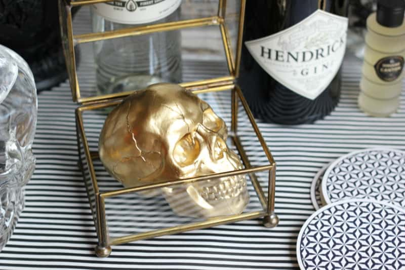 Display box with a skull
