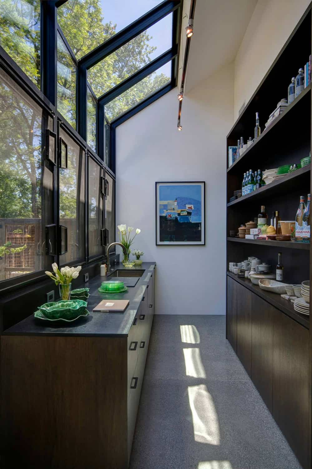 Contemporary pantry with an atrium