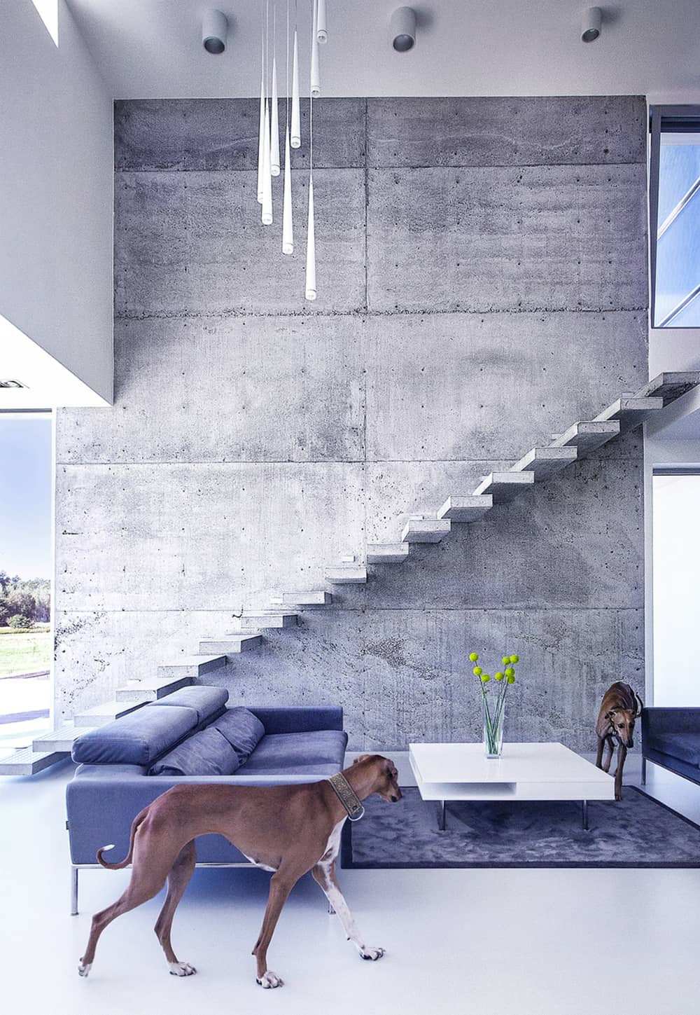 Living area with a floating concrete staircase