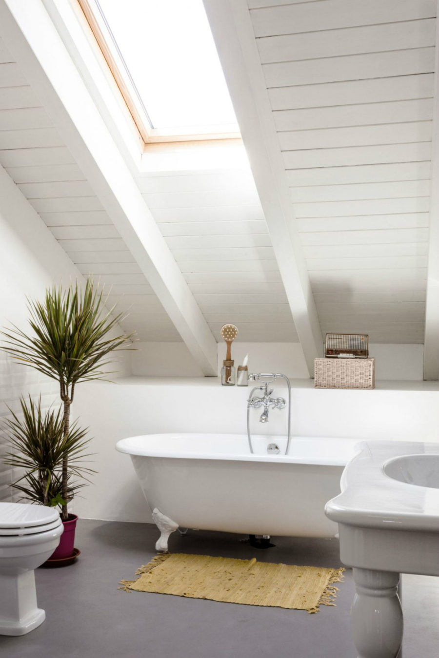 Bathroom with a skylight