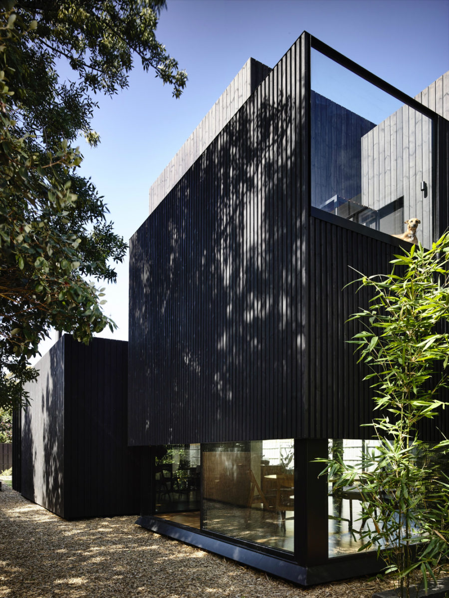 Its part wood, part glass exterior balances light and privacy