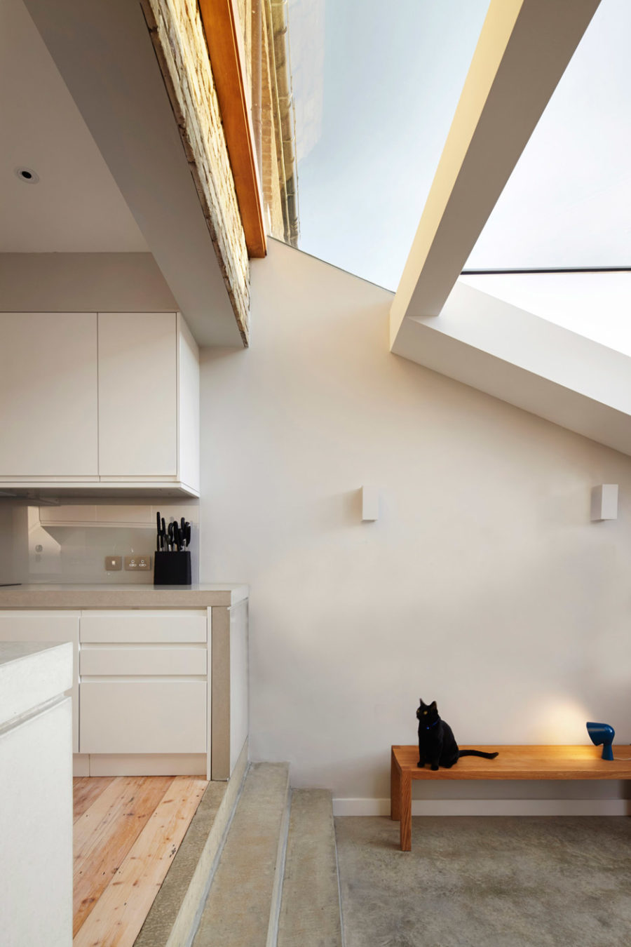 House extension skylight