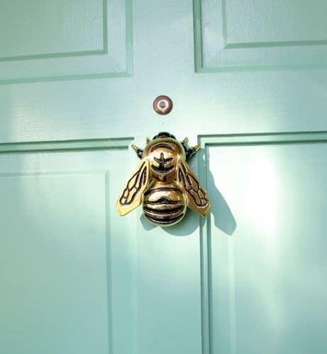 Traditional Bugs Wall Art