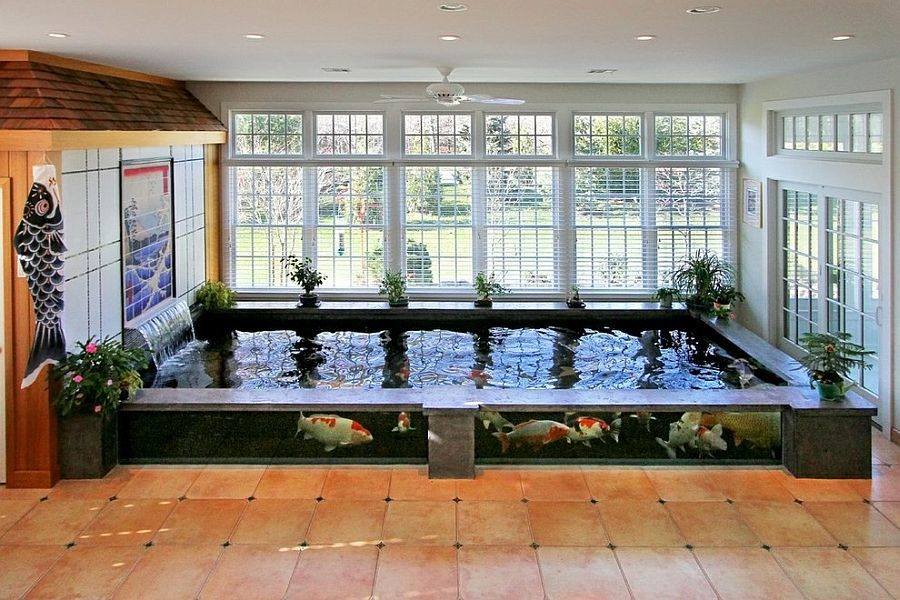 20 koi ponds that will add a bit of magic to your home for Koi pond window