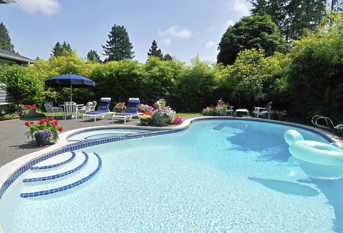 large kidney shape inground pool