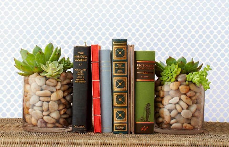Succulent-bookends
