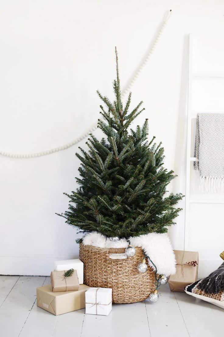 minimalist treee