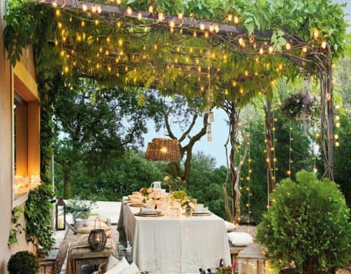 Fall in Love with these Dreamy backyard ideas