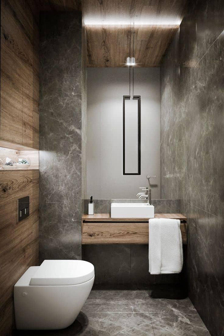 mounted toilet