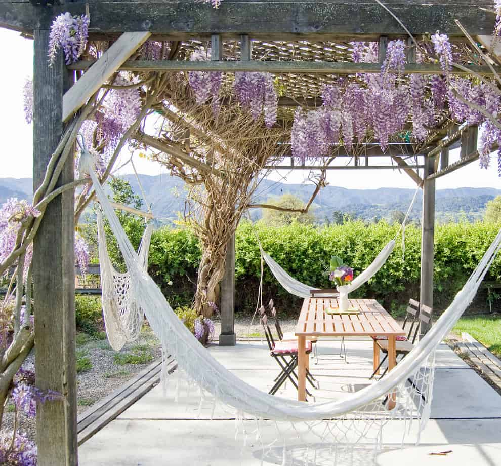 hammock in lviing room