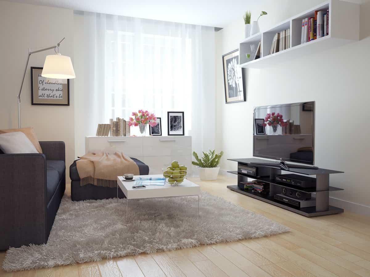 rug in living rom