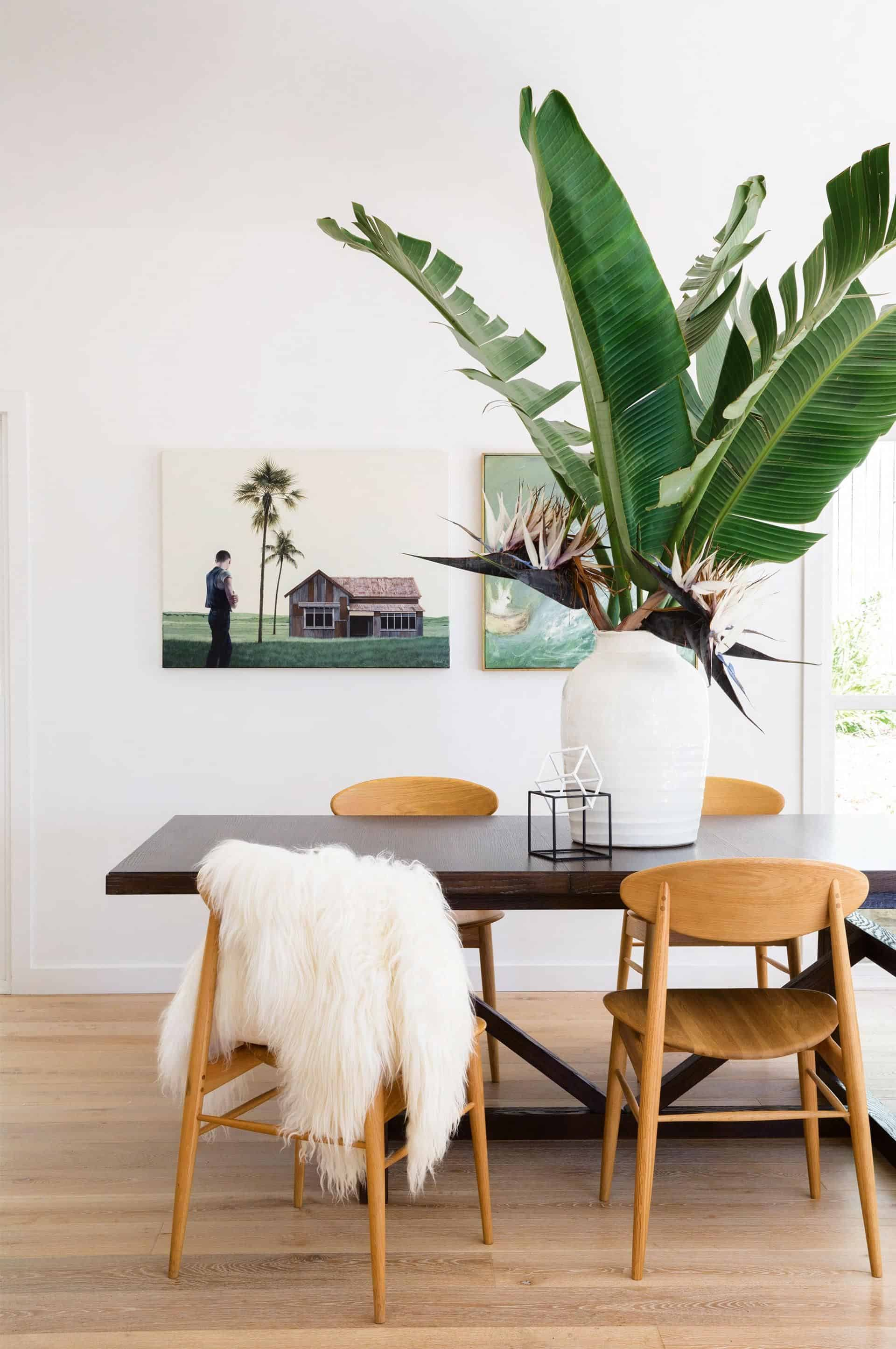 large plant on dining room
