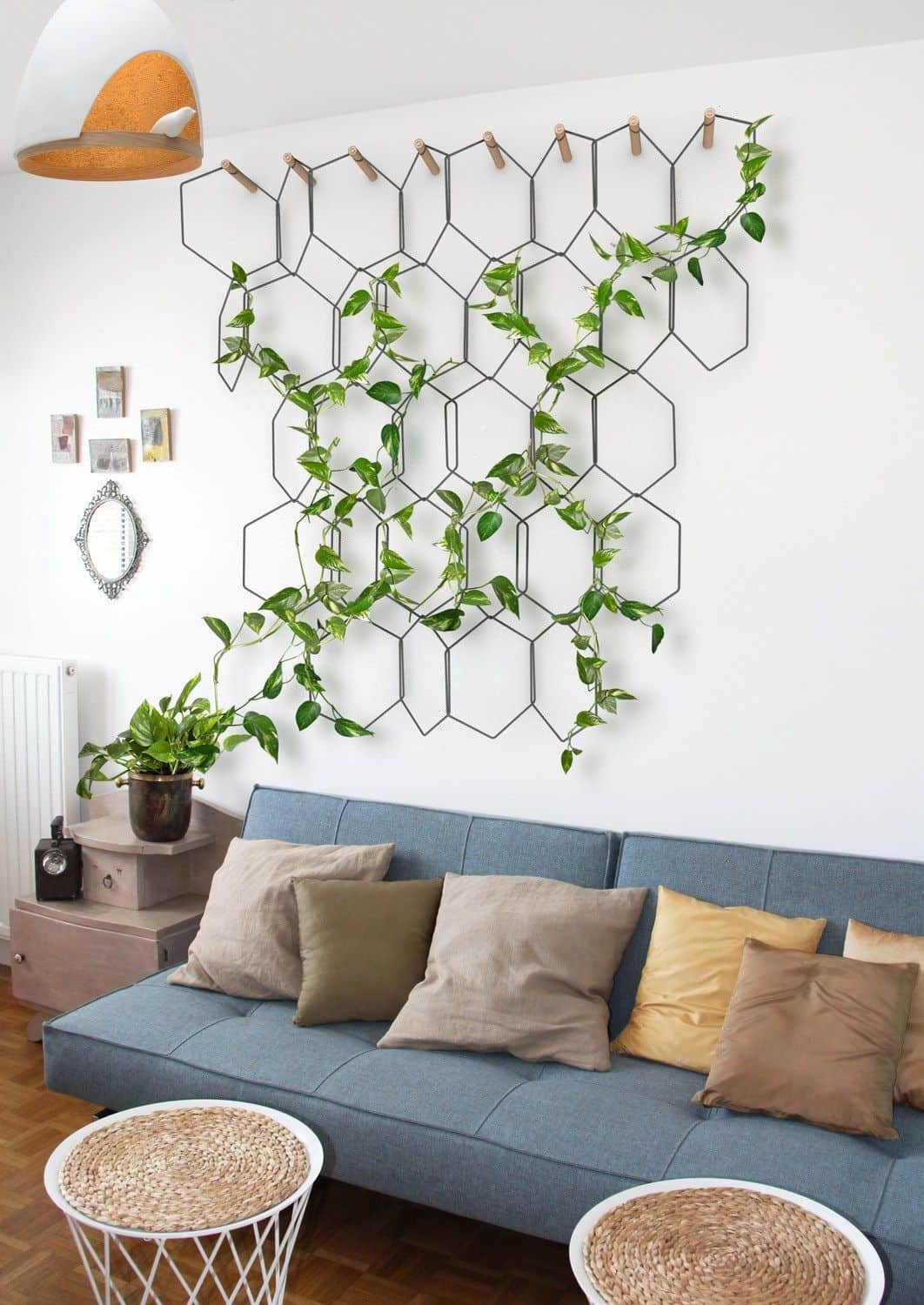 vertical plants Best Indoor Trees For Every Room In Your House