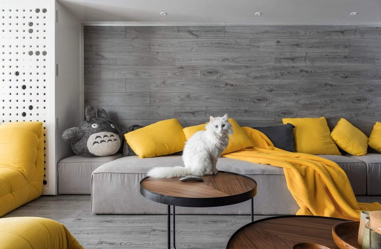 no wood pet Tips and Tricks For The Perfect Pet Friendly Interior Design