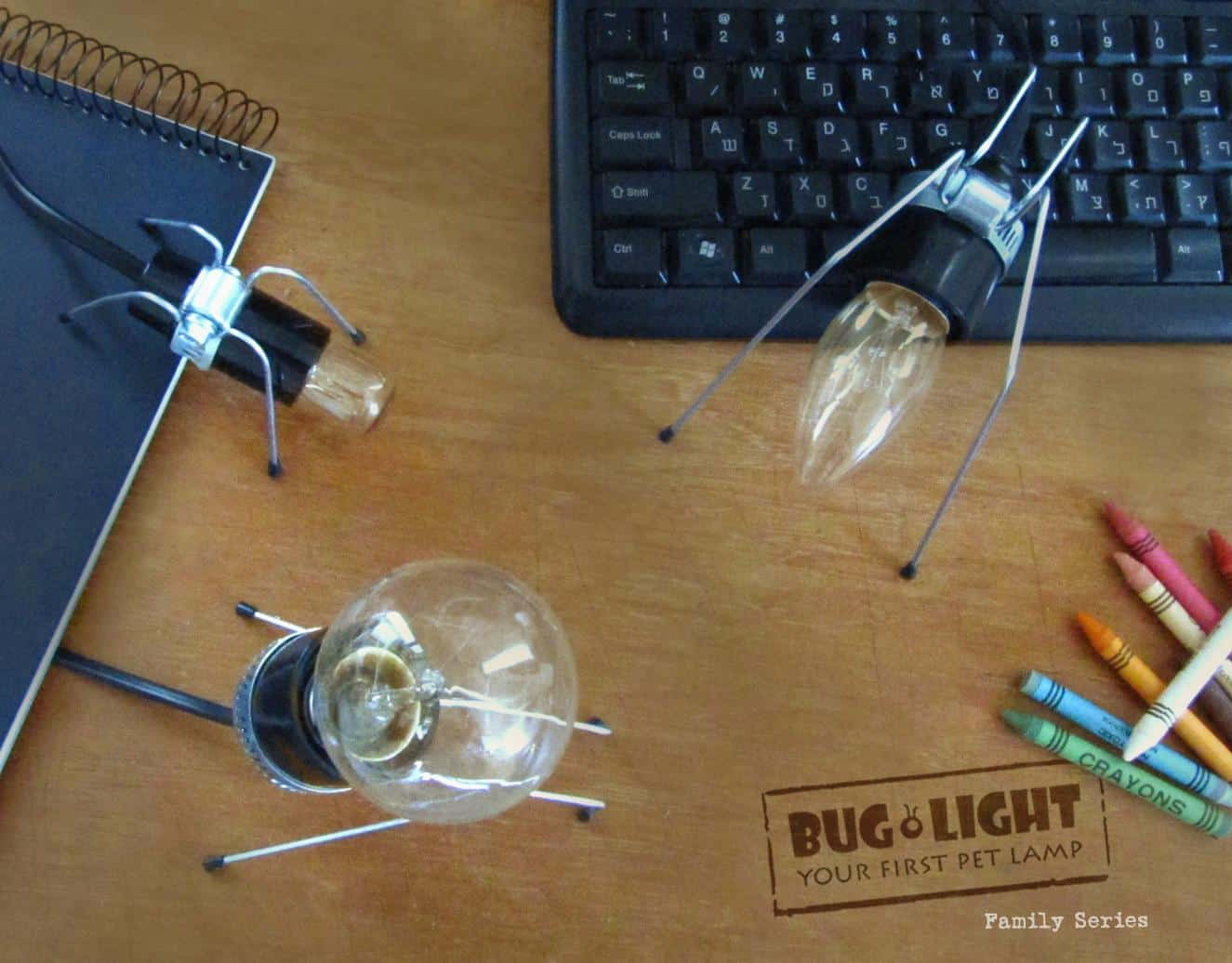 Bug Light Is A Tabletop Collection Of Insect Lamps